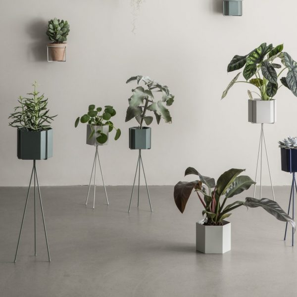 Plantstand sfeerfoto