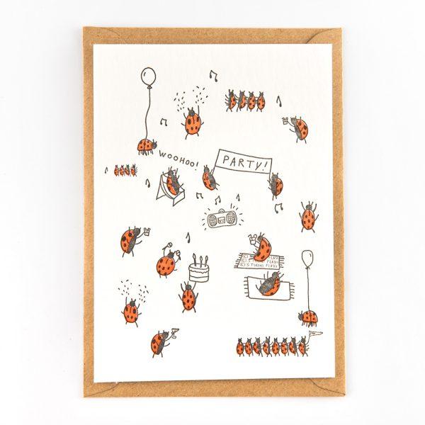 Ladybug party studio flash