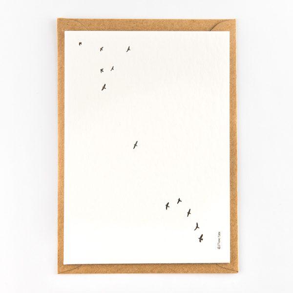 birds wenskaart