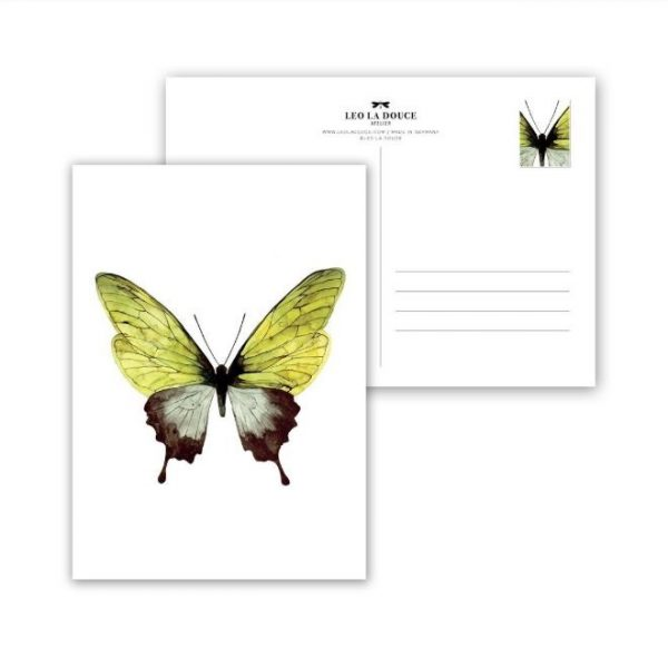 leo la douce vlinder groen